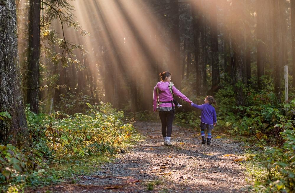 afbeelding bij kopp coaching, wandelende ouder met kinderen in bos met zonnestralen